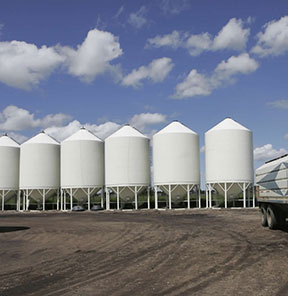 White Wall Grain Bins